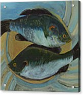Lake Martin Fish Acrylic Print