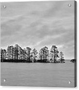 Lake Mattamuskeet Acrylic Print