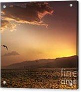 Lake Mead Sunrise Acrylic Print