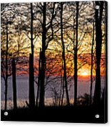 Lake Michigan Sunset With Silhouetted Trees Acrylic Print