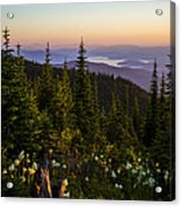 140701a-042 Lake Pend Oreille From The Cabinets Acrylic Print