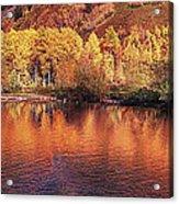 Lake Reflection In Fall 2 Acrylic Print