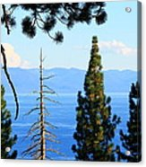 Lake Tahoe Tranquil Acrylic Print by Saya Studios