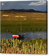 Lake Titicaca And Quinoa Field Acrylic Print
