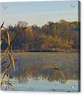 Lake Towhee In Autumn Acrylic Print