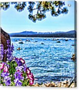 Lake View On Lake Tahoe By Diana Sainz Acrylic Print