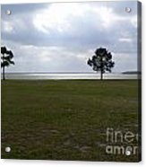 Lake Yale Florida Acrylic Print