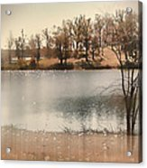 Lakes Edge Acrylic Print