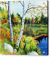 Lakeside Birches Acrylic Print