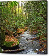 Lamance Creek Vertical Acrylic Print