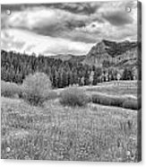 Lamar Valley Looking Towards Specimen Ridge Bw- Yellowstone Acrylic Print