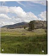 Lamar Valley No. 2 Acrylic Print