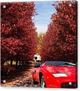 Lamborghini Maple Lane Big House Acrylic Print