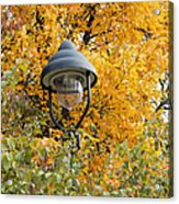 Lamp In The Autumn Leaves Acrylic Print