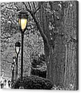 Lamp Lite Acrylic Print
