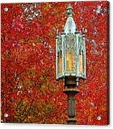 Lamp Post In Fall Acrylic Print