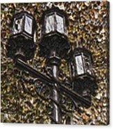 Lamp Post In The Fall Acrylic Print