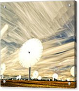 Land Of The Giant Lollypops Acrylic Print by Matt Molloy