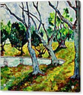Land Park Dancing Trees Acrylic Print