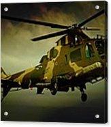 Landing Blades Acrylic Print