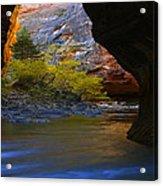 Landscape 319 Acrylic Print