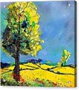 Landscape 563160 Acrylic Print