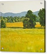 landscape art print oil painting for sale Fields Acrylic Print