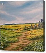 Landscape Field Grass Trees And Road  Acrylic Print by Drinka Mercep