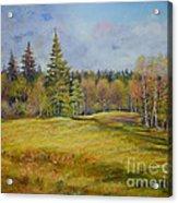 Landscape From Pyhajarvi Acrylic Print