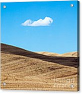 Landscape In Summer Tuscany Italy Acrylic Print
