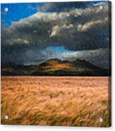 Landscape Of Windy Wheat Field In Front Of Mountain Range With D Acrylic Print by Matthew Gibson