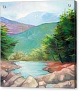 Landscape With A Creek Acrylic Print