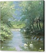 Landscape With Swans Acrylic Print