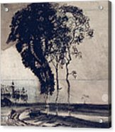Landscape With Three Trees Acrylic Print