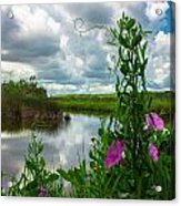 Landscaped Acrylic Print