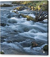 Lanesboro Dam 10 Acrylic Print