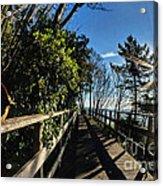 Langmoor-lister Bridge Acrylic Print