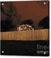 Lanscape I10a D.c. Acrylic Print