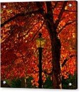 Lantern In Autumn Acrylic Print