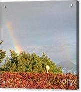 L'arcobaleno Acrylic Print