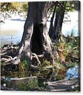 Large Tree Trunk Acrylic Print