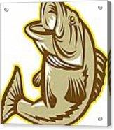 Largemouth Bass Fish Jumping Retro Acrylic Print by Aloysius Patrimonio