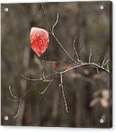 Last Leaf Acrylic Print