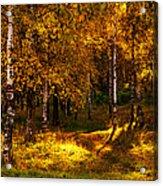 Last Song Of The Autumn 1 Acrylic Print