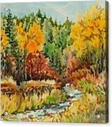 Latah Creek Fall Colors Acrylic Print