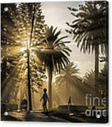 Late Afternoon Sunbeams Acrylic Print