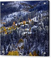 Late Fall In Vail Acrylic Print
