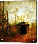 Late October Acrylic Print