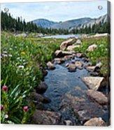 Late Summer Mountain Landscape Acrylic Print