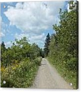 Late Summer Trail Acrylic Print